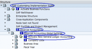 Menu Path -Activate New General Ledger Accounting