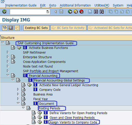 Assign Variants to Company code sap