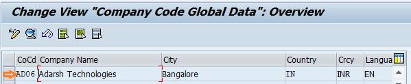 company code global parameters