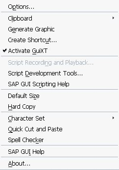 customizing SAP Layout