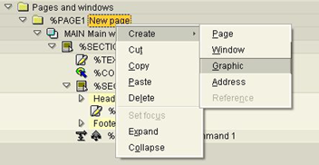 pages and windowssmartforms