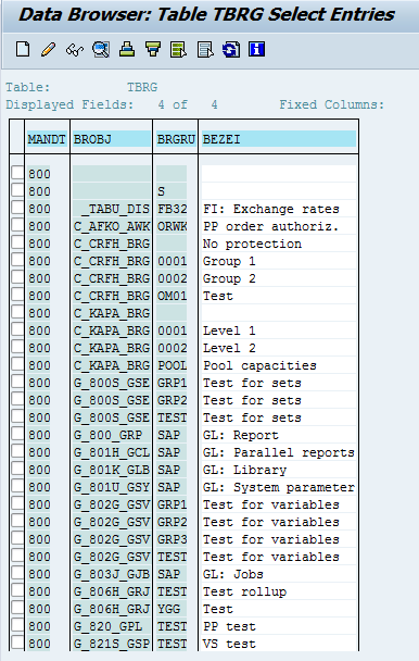 Authorization Groups in SAP TBRG table overview