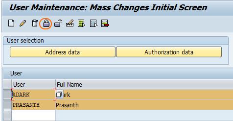 User Mass Maintenance using SU10 - Lock